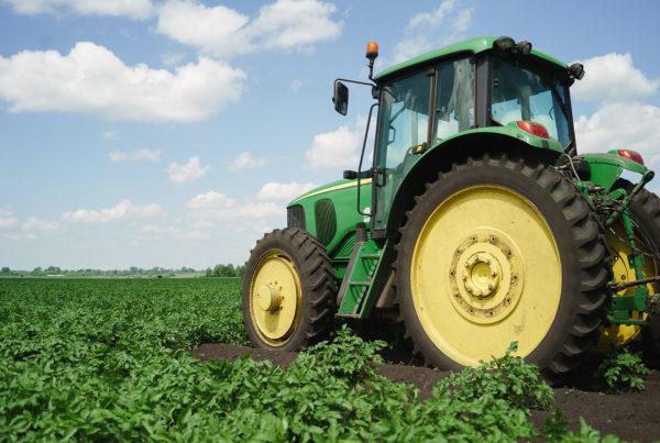Czy ubezpieczenie gospodarstw rolnych jest obowiązkowe?